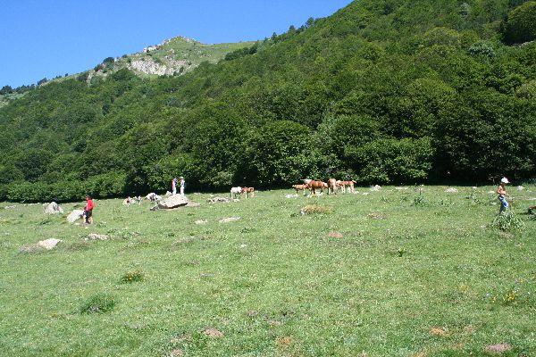 Walking and Hiking in the Pyrenees